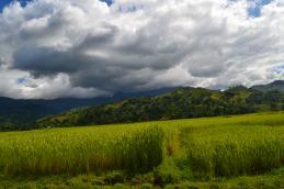 Die Regenzeit ist zwar vorbei, doch noch immer war es schwül und heiss in Ambodihasina.